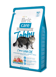 BRIT CARE CAT TOBBY IM A LARGE CAT