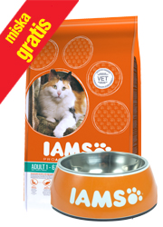 IAMS CAT PROACTIVE HEALTH HAIRBALL CONTROL KARMA DLA KOTA
