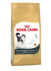 ROYAL CANIN FELINE BREED NORWEGIAN ADULT