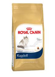 ROYAL CANIN FELINE BREED RAGDOLL ADULT