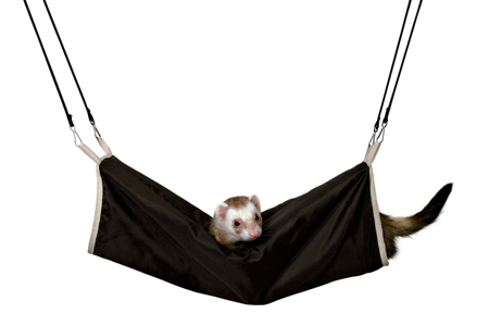 Trixie tunel dla fretki i szczura