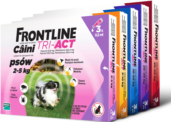 Frontline Tri Act preparat na pchły i kleszcze dla psów