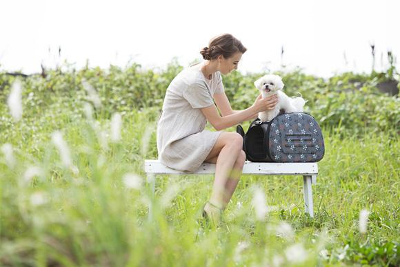ibiyaya torba szara dla psa i kota